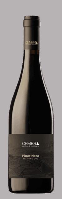 Pinot Nero Trentino DOC  bottle