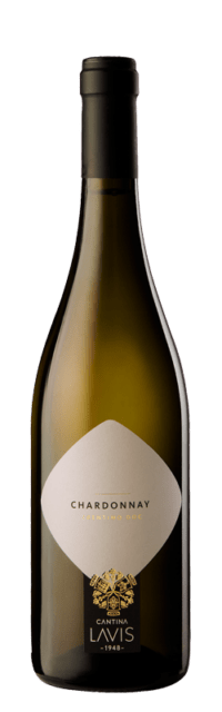 Chardonnay Trentino DOC  bottle