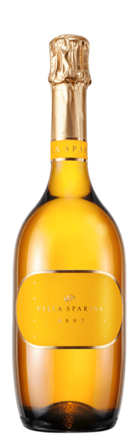 Brut Blanc de Blancs Metodo Classico - Bottle Fermented bottle