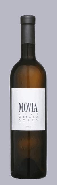 Pinot Grigio Ambra Brda Suho Belo Kakovostino Vino ZGP bottle