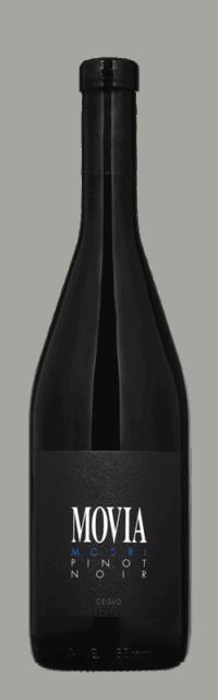 Modri Pinot Noir Brda Suho Rdeče Kakovostino Vino ZGP bottle