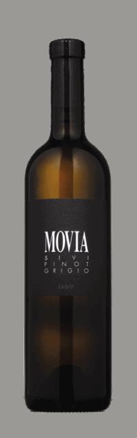Pinot Grigio Brda Suho Belo Kakovostino Vino ZGP bottle