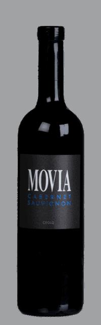 Cabernet Sauvignon Brda Suho Rdeče Kakovostino Vino ZGP bottle