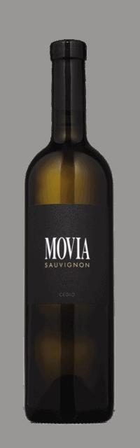 Sauvignon Brda Suho Belo Kakovostino Vino ZGP bottle