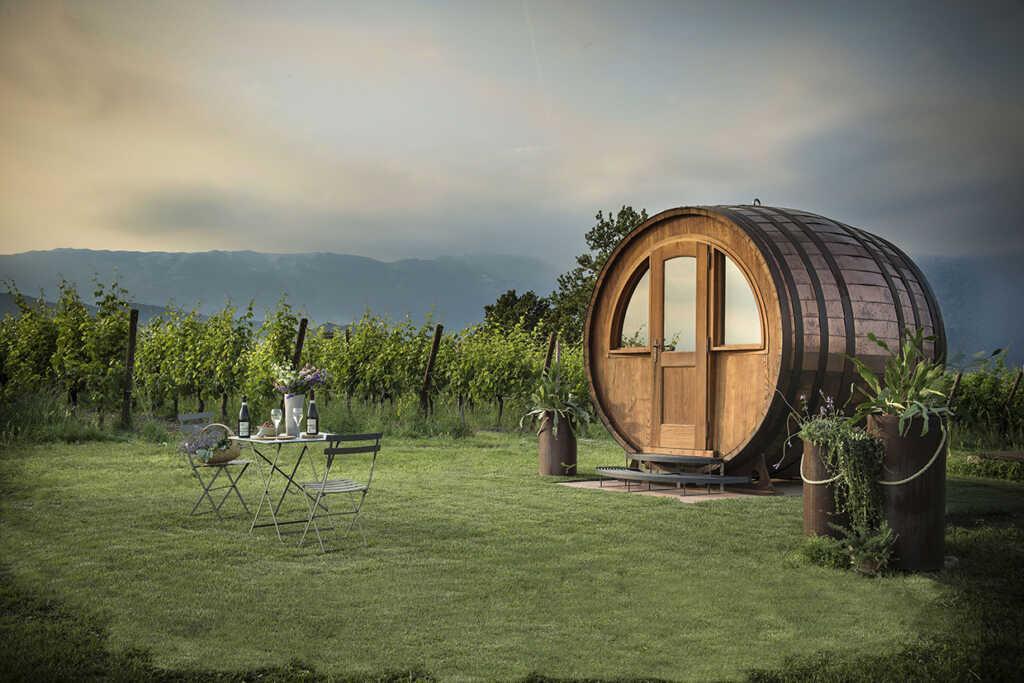 Organic_Prosecco_Antica_Quercia_winery