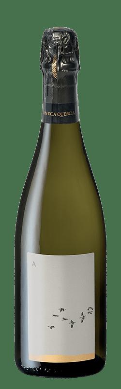 Ancestrale Prosecco Superiore DOCG bottle